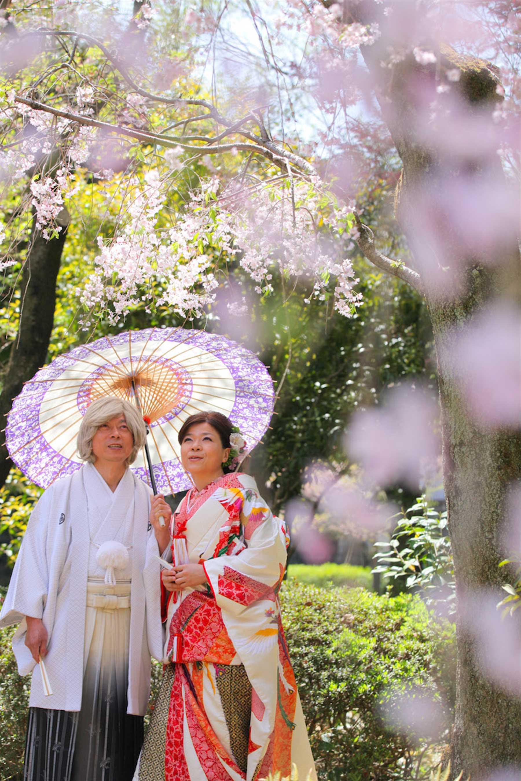 2011/4/17大門家佐藤家レポート