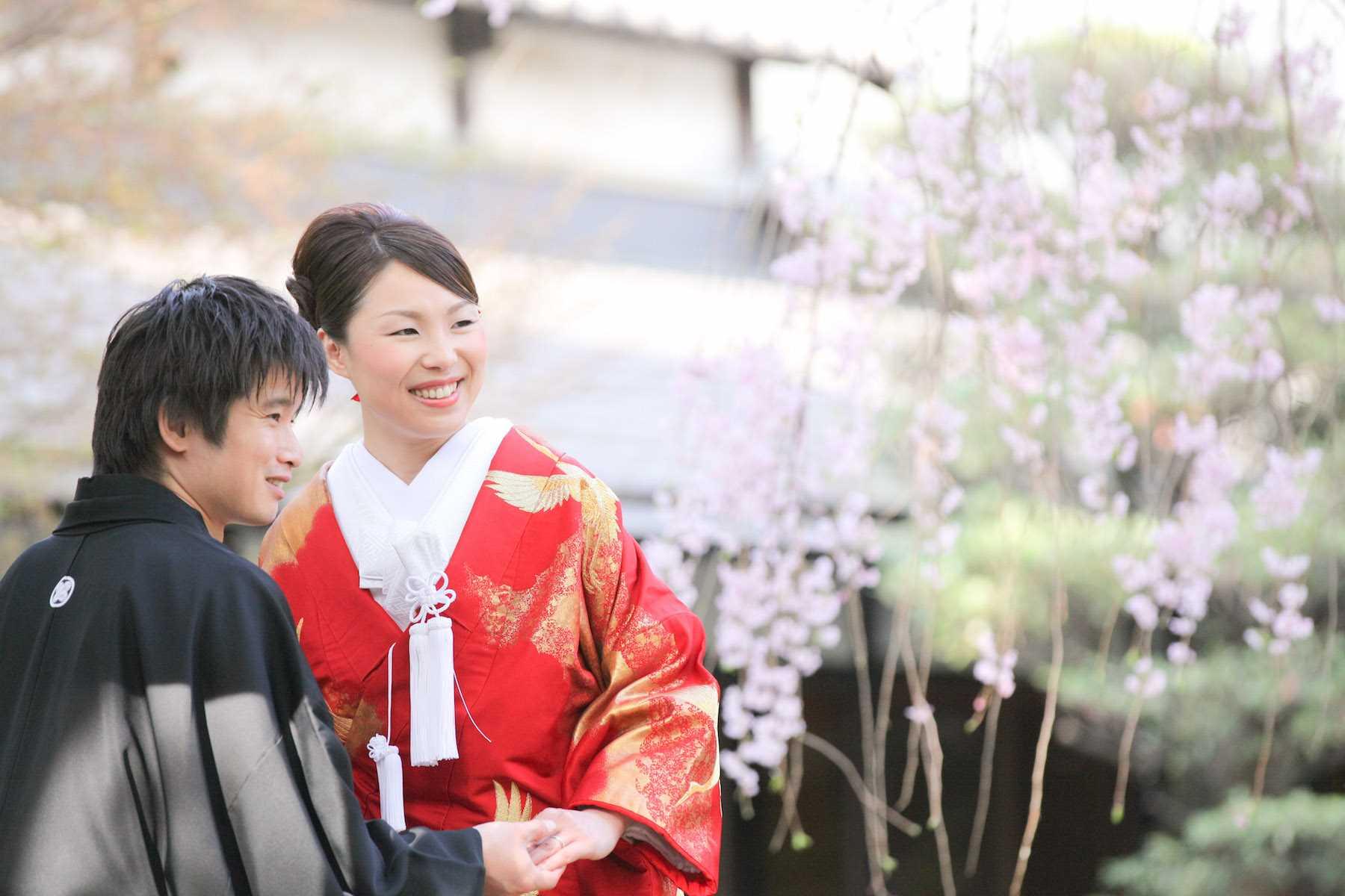 2011/4/17石川家近藤家レポート